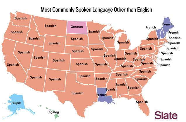 google ads language settings